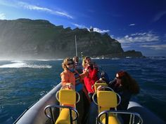 Cape Point Boat Trip Cape Town, Boating, South Africa, Cruise, Island, Places, Beautiful, Cruises, Islands