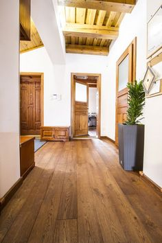 Chiseunova svédpadló Garage Doors, Outdoor Decor, Modern, Home Decor, Trendy Tree, Decoration Home, Room Decor, Carriage Doors, Interior Decorating