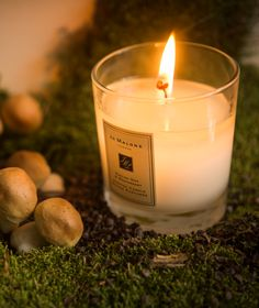 Add an air of magic with the English Oak & Redcurrant Home Candle. Perfect for cosy autumnal evenings. Home Candles, Jo Malone, Autumnal, Earthy, Candle Jars, Cosy, Berry, English, Magic