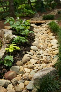 60+ Inspiring Dry Riverbed and Creek Bed Landscaping