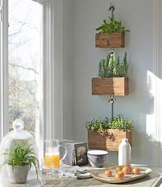 Jardin suspendu fait de bacs en bois style rétro, dans la cuisine.