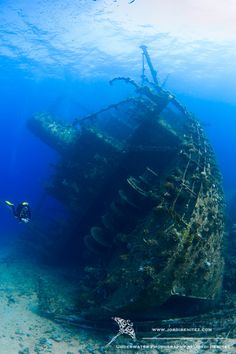 The Giannis D has become a classic wreck of the northern routes of the Red Sea, especially among the photographers who visit it, trying to take pictures as extraordinary as this one by Jordi Benitez. The Giannis D, lying on Abu Nuhas Reef (Egypt), hosts plenty of wildlife, from dolphins to reef sharks, napoleon wrasse or giant parrotfish. Picture by Jordi Benitez http://www.fordivers.com/en/blog/2013/02/25/los-10-mejores-pecios-del-mar-rojo/