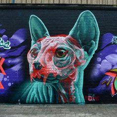 ...by INSANE51, Belgium ;)   #streetart
