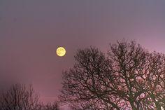 La Luna es 100 millones de años más joven de lo que seestimaba