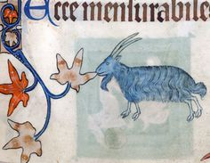 blue goat nibbling a manuscript border  Luttrell Psalter, England ca. 1325-1340  British Library, Add 42130, fol. 76r