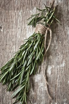 Yummy Supper Rosemary and/or pine sprigs tied with jute or string - Could make a great boutonniereRosemary and/or pine sprigs tied with jute or string - Could make a great boutonniere Spices And Herbs, Fresh Herbs, Pot Pourri, Pear Tart, Herb Garden, Garden Club, Beautiful Flowers, Herbalism, Food Photography