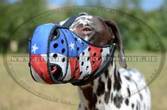 http://www.hunde-maulkorb-store.de/index.php?main_page=product_info