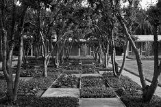 Miller Garden Columbus OH, Dan Kiley