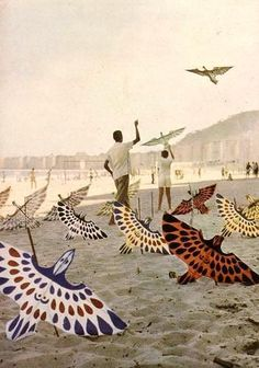 make a kite like this Salvador, Ecuador, Rio Brazil, Collage Book, Nostalgia, Ferrat, Kite, Installation Art, Time Travel