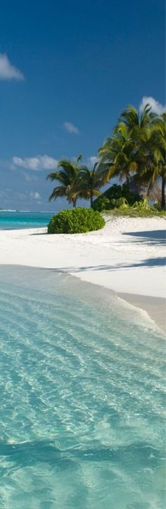 arena blanca, agua tibia y transparente....