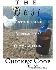An awesome, yummy smelling antimicrobial, antibacterial all natural cleaning spray for your chicken coop!