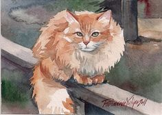 Items similar to Giclee Print of Watercolor Painting Red Cat Kitty Ginger Cat Tabby Cute Red and White Cat on Etsy