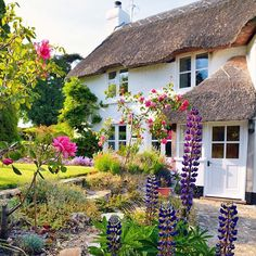 A lovely thatched roof cottage in Devon, England