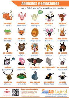 Poster educativo - animales y emociones