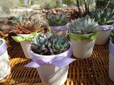 These mini-succulents could double as centerpiece elements and guest favors (that would actually hold up!)