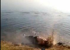 Ejecución sumaria a la orilla del Éufrates | Internacional | EL PAÍS