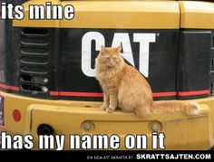It's mine has my name on it