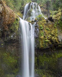 Fall hiking at Falls Creek Falls #itsanorthwestthing #waterfall #pnw #portland #oregon #outdoorproject #pdx #hiking #fallscreekfalls  @robbyzabala