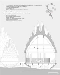 Architecture Studio has unveiled a vision for an eco-resort in Latvia, featuring pavilions topped with inflatable roofs that look like pine cones Forest Resort, Un Studio, Fibreglass Roof, Architectural Section, Wood Beams, Architecture Plan, Green Building, Pine Cones