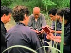 Bambus no Inverno - Filme sobre os Cristãos perseguidos pelo Comunismo na China - YouTube