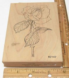 ROSE JUMBO DETAILED BY COMOTION RUBBER STAMP #COMOTION #rubberstamp