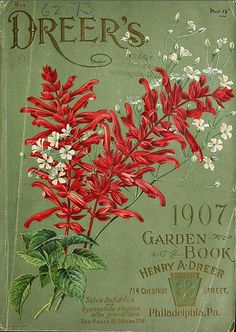 1907 Vintage Catalog & Garden Book for Dreer's of Philadelphia PA