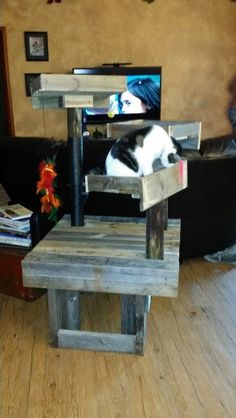DIY Pallet Cat Tree