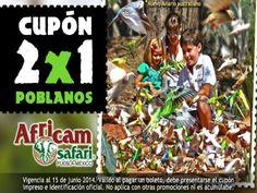 ENTERATE Ven y hospedate en La Quinta Inn&Suites Puebla y compra los boletos para ir a la increible aventura de Africam Safari en recepción no te lo puedes perder!!! comonuevocadadia visitapuebla