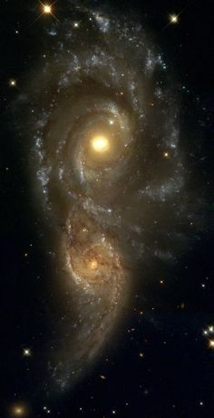 NGC 2207 & IC 2163 are a pair of colliding spiral galaxies about 80 mly away in Canis Major. Both galaxies were discovered by John Herschel in 1835. So far 4 supernovae have been observed in NGC 2207.  The most recent encounter peaked 40 Ma. The smaller galaxy is swinging around counter-clockwise, & is now slightly behind the larger galaxy. Wikipedia