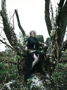 enchanted forest dreamer
