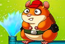 Plumber Beeny Hamster Game Is The Greatest Time Limit Online Game