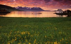 Northern Norway - The official website for travel and adventures in the north of Norway