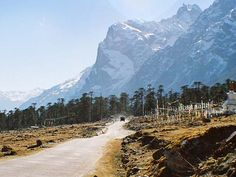 yumthang_valley. Sikkim