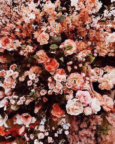 Types Of Purple Flowers Products Silk Flowers Arrangements Tips Flowers In Hair, Pretty Flowers, Silk Flowers, Wedding Flowers, Purple Flowers, Beautiful Flowers Wallpapers, No Rain, Flower Aesthetic, Flower Wallpaper