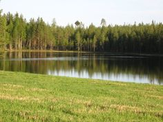 Typical lake view and beauty of Finnish nature in the summer by JanneMasa.deviantart.com