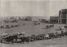 """Antique print 'Johannesburg - The market square' From a photo by Wm. Laws Caney from """"Round The World""""; Print Pictures, Old Pictures, Old Photos, Johannesburg City, Historical Pictures, African History, Antique Prints, Old Antiques, Live"""