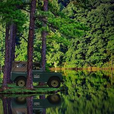 Landy Solitude....A Study in Green