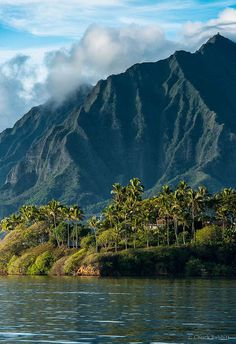Valley of the Temples Memorial Park on the Windward side of Oahu near Kaneohe, Hawaii