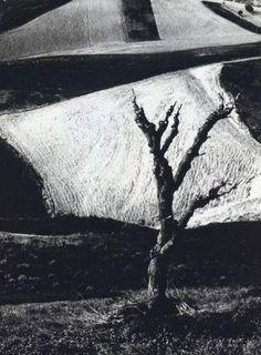 Mario Giacomelli (1925 - 2000)