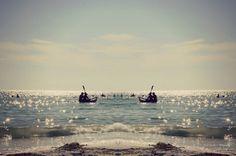 Canoe Twins.  Florida Gulf Coast Beach  Beach by CestLaVieArt
