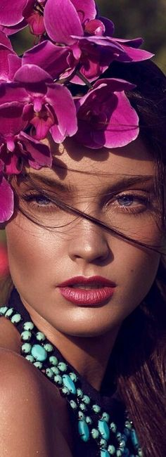 A VISION IN FLOWERS BELLA DONNA