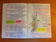 filofax notebook - Google Search