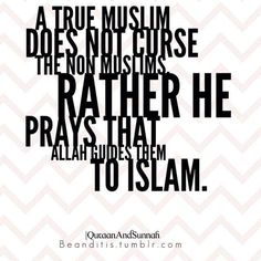 """A true Muslim does not curse the non-Muslims, rather he prays that Allah guides them to Islam."""