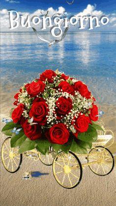 Beautiful Love Pictures, Romantic Pictures, Beautiful Gif, Flowers Gif, Beautiful Rose Flowers, Love Rose, Easter Flower Arrangements, Easter Flowers, Floral Arrangements