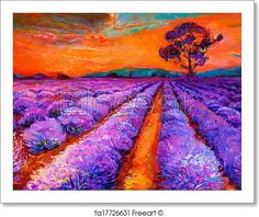 Lavender fields - Artwork  - Art Print from FreeArt.com