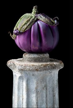 Italian Eggplant - Lynn Karlin / Raw Art: The Pedestal Series by Gallery Fruit And Veg, Fruits And Vegetables, Still Life Photography, Food Photography, Veggie Art, Vegetables Photography, World Of Color, Edible Art, Food Illustrations