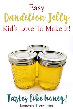 This is such a easy jelly recipe for beginner canners. Enjoy making this fun and unique flower jelly with your kids. Step by step photos makes this the perfect unusual jelly to get started with. It tastes just like honey and is sure to be enjoyed! Jelly Kid, Dandelion Recipes, Dandelion Jam Recipe, Dandelion Jelly Canning Recipe, Homemade Jelly, Jam And Jelly, Wine Jelly, Home Canning, Jelly Recipes