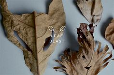 Leaf Beasts \ Japanese artist-Baku Maeda\ He makes fragile sculptures of cute animals and creatures out of fallen leaves.