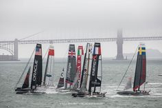 Fleet Racing on San Francisco Bay in the America's Cup World Series