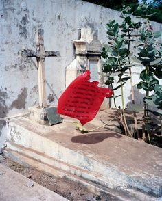 Viviane Sassen is a Dutch artist living in Amsterdam who works in both the fashion and fine art world Viviane Sassen, Pop Art, Living In Amsterdam, Street Art, Dutch Artists, Day For Night, Color Photography, Photography Projects, Installation Art